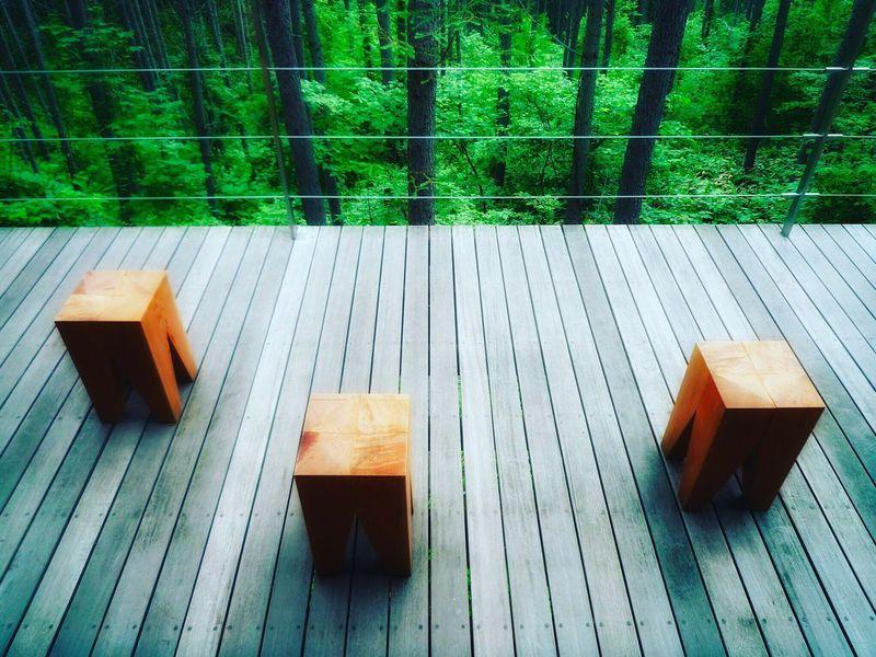 Hokkaido,Japan Furano Wood - Material Day No People Outdoors Nature Close-up