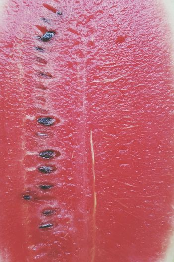 Watermellon Watermellon  Background Fresh Fruit Red Seeds