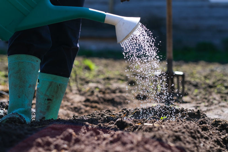 One Person Water Nature Real People Day Motion Gardening Equipment Gardening Growth Plant Lifestyles Land Outdoors Human Body Part Dirt Field Working Selective Focus Spraying Garden Hose Hand Farmer Jeans Planting