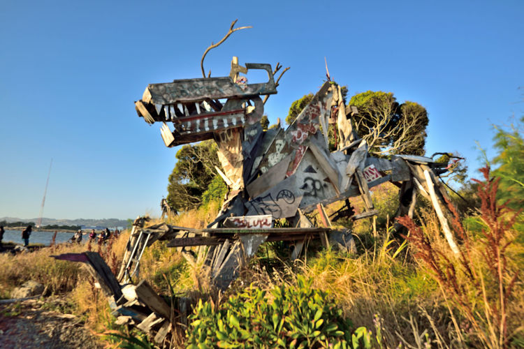 The Albany Bulb 5 Albany, Ca. Waterfront Peninsula Eastern Shore San Francisco BayFormer Landfill Dump For Contruction Materials Closed 1987 Became A Home For Urban Artists An Anarchical No Man's Land Outsider's Art Sculptures, Murals, Graffiti, Installation Art Made From Waste Recycled Materials The Bulb Outdoor Sculptor: Osha Neumann Activist,lawyer Defender Of The Homeless Public Art Urban Art Bum's Paradise 2003 Movie Sundown Sunset Bay Shoreline