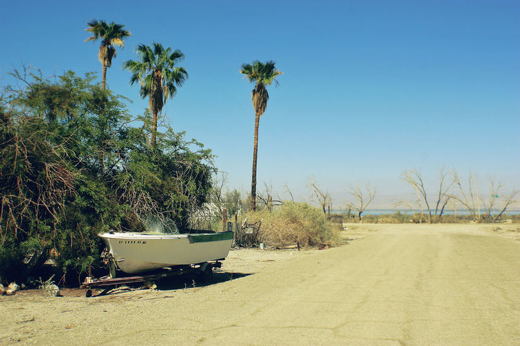 Desert Desolate Salton Sea Boat Trailer Clear Sky Day No People Palm Tree Small Boat Sunlight