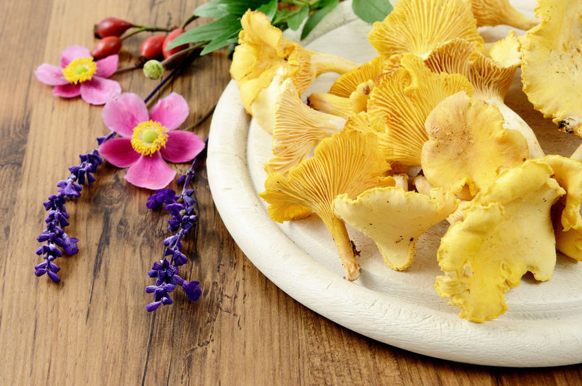 golden chantarelle mushrooms with sage flower on a wooden table with anemone flowers Flower Flower Head Mushroom Petal Indoor Pfifferlinge Golden Chanterelle Chanterelles Chanterelle Mushrooms Chanterelle Mushrooms 🍄🍄 Mushroom_pictures Mushrooms Erica Heather Herb Herbs Rosehips Anemone Flower