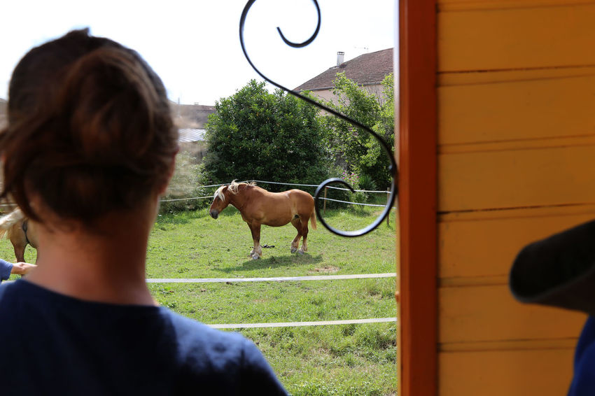 1808, holiday with a horse, vogesen, france France Holiday Day Domestic Domestic Animals Holiday - Event Holiday With A Horse Horse Leisure Activity Mammal Mode Of Transportation Nature One Animal One Person Outdoors Real People Rear View Vogesen Women Working Animal