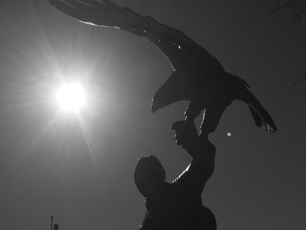 Rocky Mountain High John Denver Memorial Greyscale Black & White Silouette & Sky Silhouettes Silhouette Blackandwhite Black And White Blackandwhitephotography Sunshine Sun Sunlight Sun_collection Rays Of Light Rays Of Sunshine Silhouette Eagle Eagles Eagle In Flight Statues And Monuments Statue Blackandwhite Photography Black N White Colorado Photography