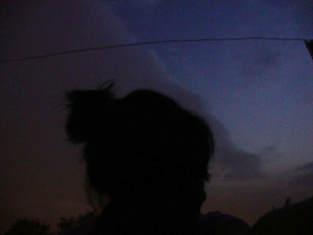 silhouette, sky, sunset, nature, one animal, night, cloud - sky, outdoors, mammal, animal themes, low angle view, no people, domestic animals