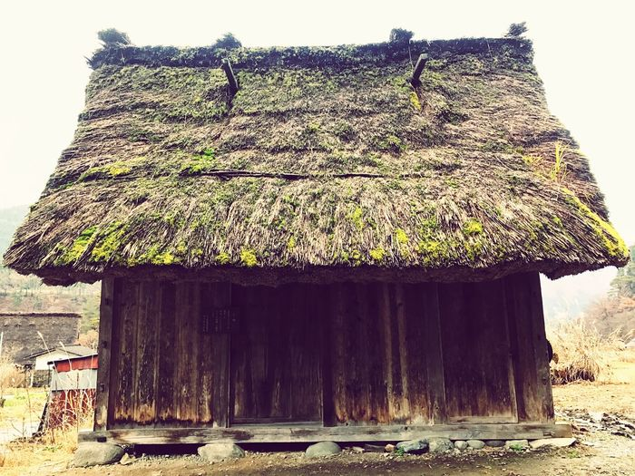 EyeEm Best Shots Thatched Roof No People Nature Outdoors Architecture Tree Built Structure Sky Day Beauty In Nature Close-up EyeEm Japan EyeEm Taiwan Beauty In Nature 白川鄉