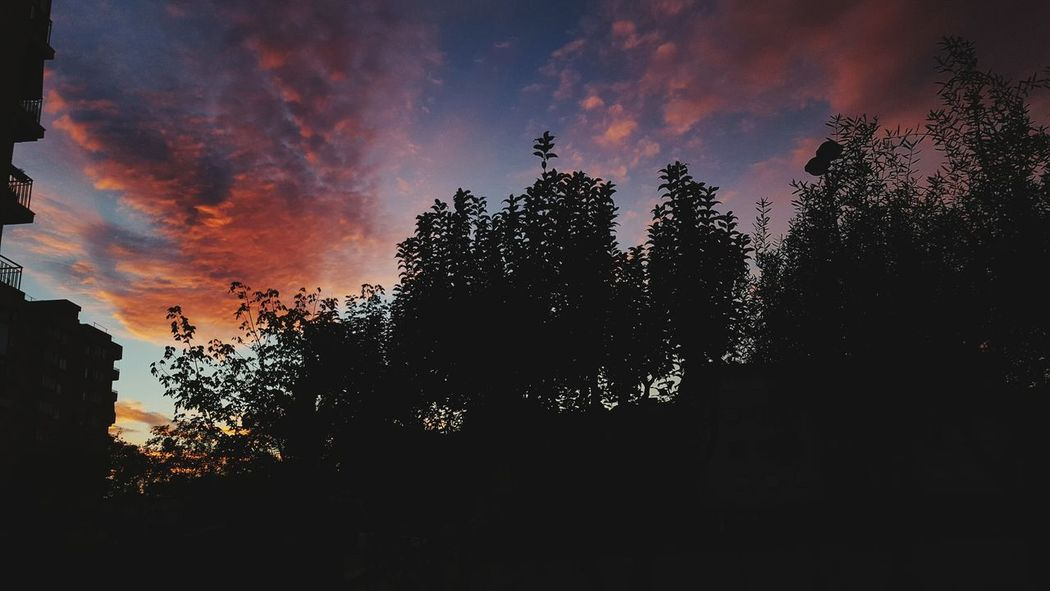 Sunset Nature Sky Cloud - Sky Photography Pink Beauty In Nature No People First Eyeem Photo