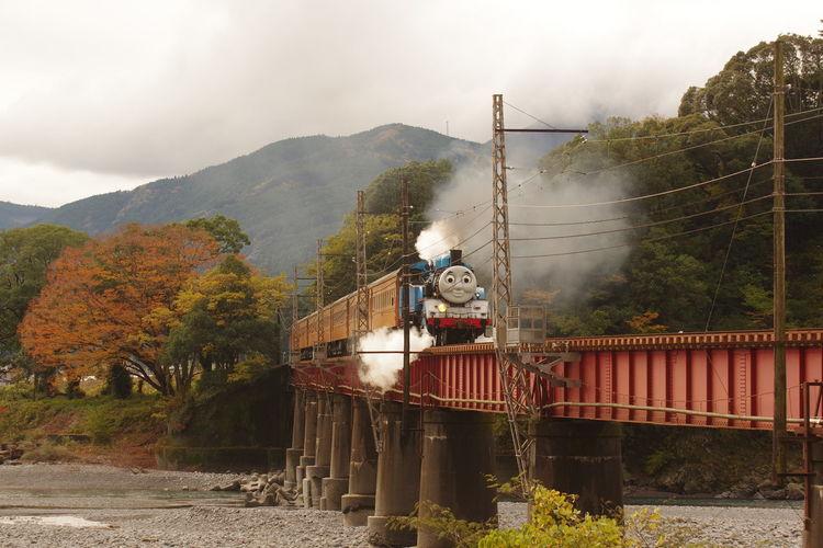 機関車トーマス 大井川鐵道