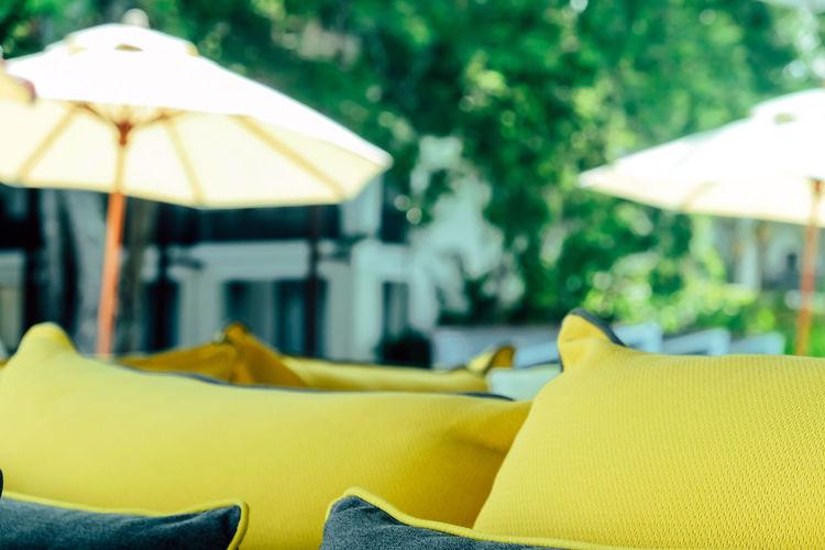 Close-up of yellow parasol