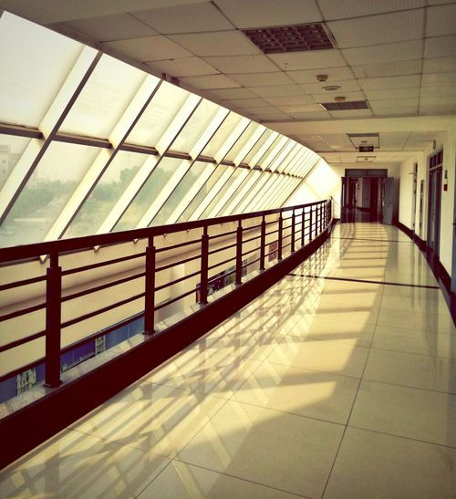 Window View Sunny Day 华北电力大学 Light And Shadow Beautiful World Amazing Day Afterschool  Structure Beatiful Light Warm Colors Summer Colorful Windows Quite Time Amazing View University University Campus Taking Photos Student Life Construction Building China Window