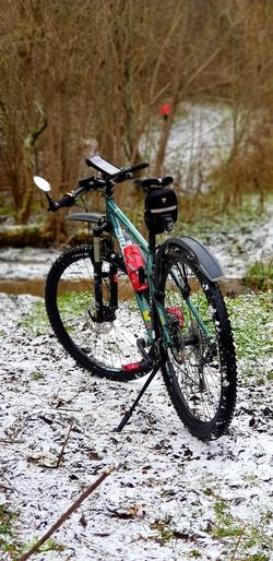 Bicycle Land Vehicle Outdoors Winter Stationary Nature