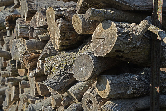 Chord Close-up Cord Day Fire Wood Full Frame Logs No People Outdoors Textured  Wood - Material