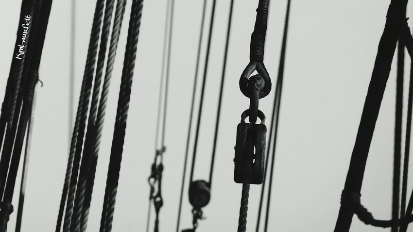 Small but significant... Ropes EE_Daily: Black And White B&W Collection Simple Moments NEM Submissions Eye4photography  Yacht Rock January2015 Photography