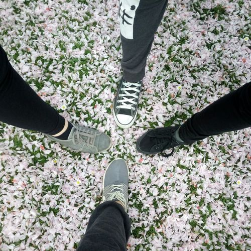 Flowers Shoes <3 Nike All Star Esprit Taking Photos Nature Color Portrait My Friends