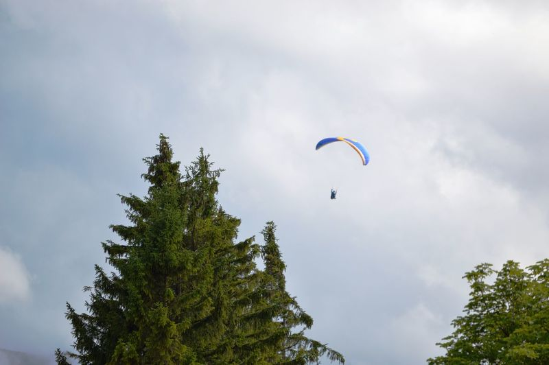Adventure Cloud - Sky Day Extreme Sports Flying Freedom Leisure Activity Low Angle View Mid-air Nature One Person Outdoors Parachute Paragliding Plant Real People Sky Sport Transportation Tree Unrecognizable Person