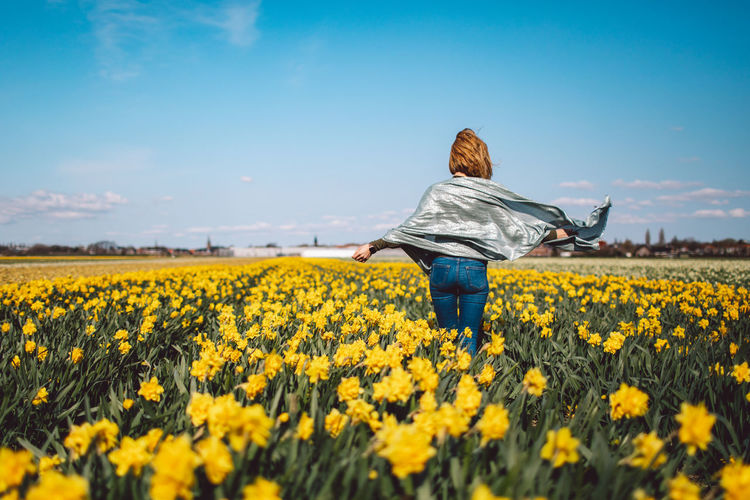 Rear view of person with yellow flowers on field