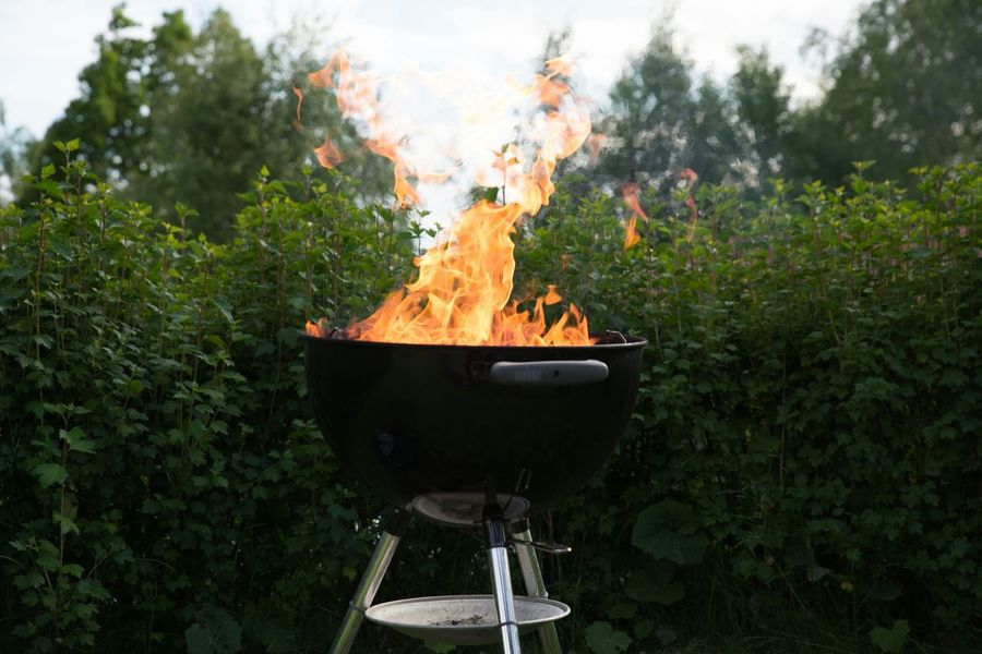 Barbecue Flames Summer Fire
