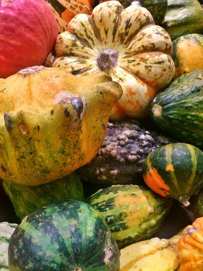 Explosion of Squashes. Colours Of Nature Colourful Fruit And Vegetables Close-up Foodphotography Vegetables Natures Diversity Marketplace Inperfect Beauty  Variety Of Nature Squashes Squash - Vegetable Eyem Diversity