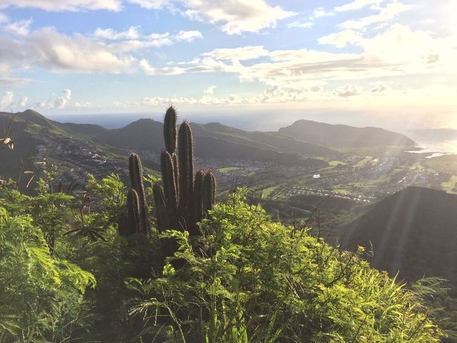 Aerial View Beauty In Nature Cactus Cloud - Sky Growth Horizon Over Land Majestic Mountain Mountain Range Outdoors Scenics Sky Sun Rays Sun Rays Through The Clouds Tranquil Scene Tranquility Tree