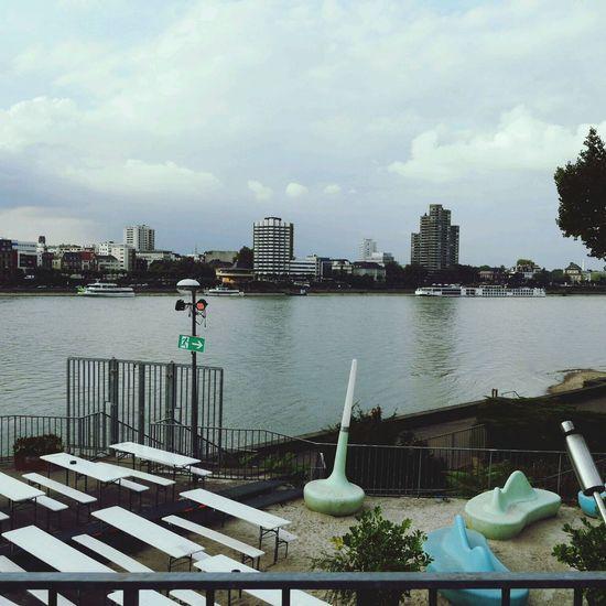 ライン川ですなー。
