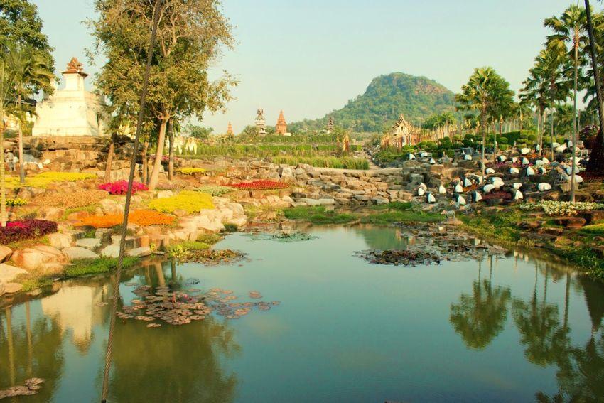 Thailand Nong Nooch Tropical Bothanical Garden