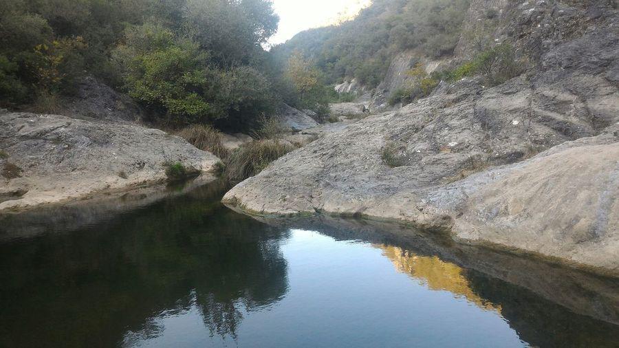 Water Tree Mountain Lake Reflection Sky