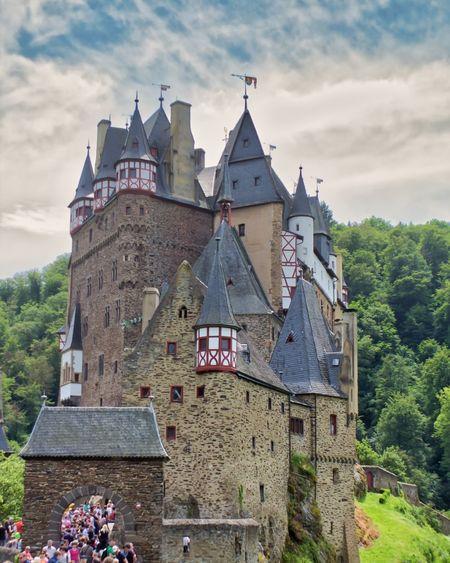 Burg Eltz Tree
