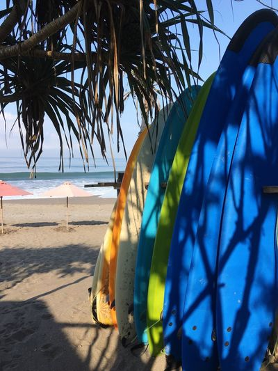 Surf boards at