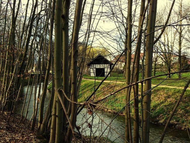 Nature Home Lausitz