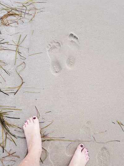 Feet and footprints in the sand. ... Misdroy In Polen Miedzyzdroje, Poland Space For Text Footprints In The Sand EyeEm Selects Low Section Nail Polish Beach Standing Sand Human Leg Summer High Angle View Directly Above FootPrint Foot Human Feet Red Nail Polish Toenail Sandy Beach Feet Toe The Still Life Photographer - 2018 EyeEm Awards The Creative - 2018 EyeEm Awards The Traveler - 2018 EyeEm Awards