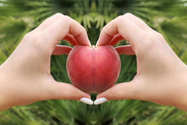 Human Body Part Human Hand Fruit Healthy Eating Holding Outdoors Close-up Healthy Lifestyle Food And Drink Agriculture Freshness Food Peach Red Peach Fruit Nature Heart Hearts Grass Green Frutta Pesca One Person Day Scenics The Architect - 2017 EyeEm Awards EyeEmNewHere