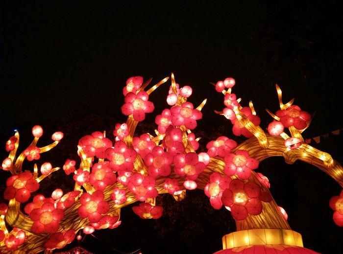 festive lantern 2 Guangzhou Yue Xiu Park Chinese Traditional Festival Festive Lantern