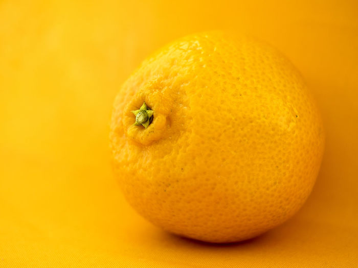 Citrus Fruit Close-up Day Food Food And Drink Freshness Fruit Healthy Eating Indoors  No People Orange Color Studio Shot Yellow