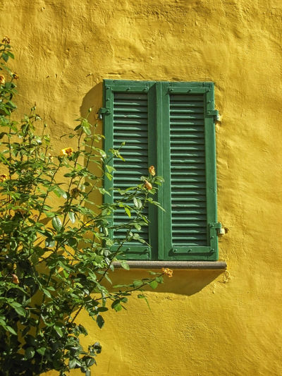 Closed window of yellow building