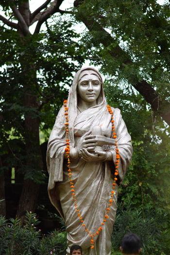 Statue of buddha on tree