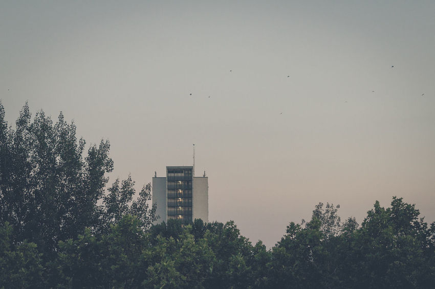 In the present Berlin Myfuckingberlin Friedrichsfelde Lichtenberg Abendsonne Evening Summer in the City SummerNights Bluehour Sky Skyporn Skyline Blauestunde Balkony View Home Hochhaus Skyscraper Wohnen Adapted To The City
