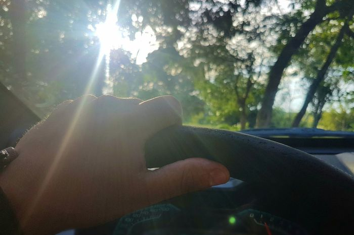 Hands Hand Sunbeam Point Of View Sunlight Lens Flare Nature Sun Human Hand Tree Steering Wheel Driving Premium Collection Getty Images Bestsellers BYOPaper! Live For The Story EyeEmNewHere The Great Outdoors - 2017 EyeEm Awards Place Of Heart Sommergefühle EyeEm Selects 100 Days Of Summer