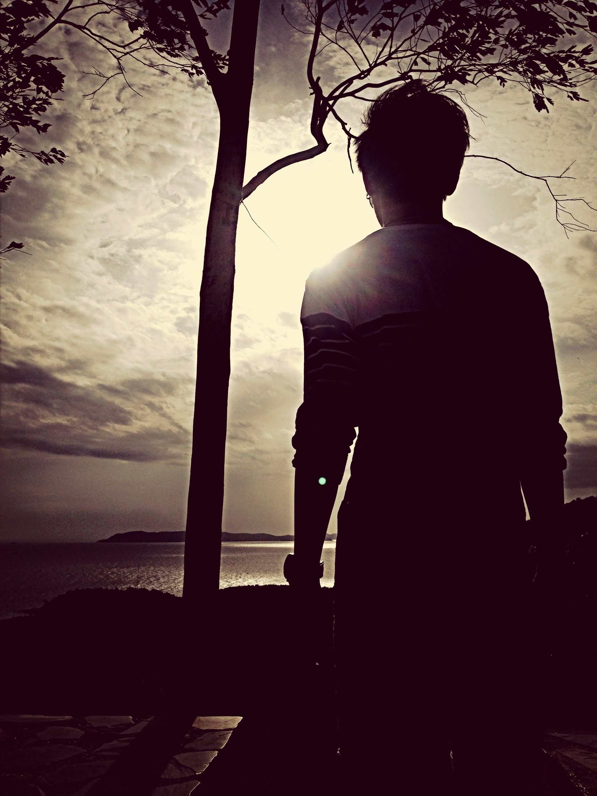 silhouette, rear view, lifestyles, standing, leisure activity, men, sky, full length, water, person, sunset, three quarter length, nature, sitting, sea, tranquility, outdoors, tree