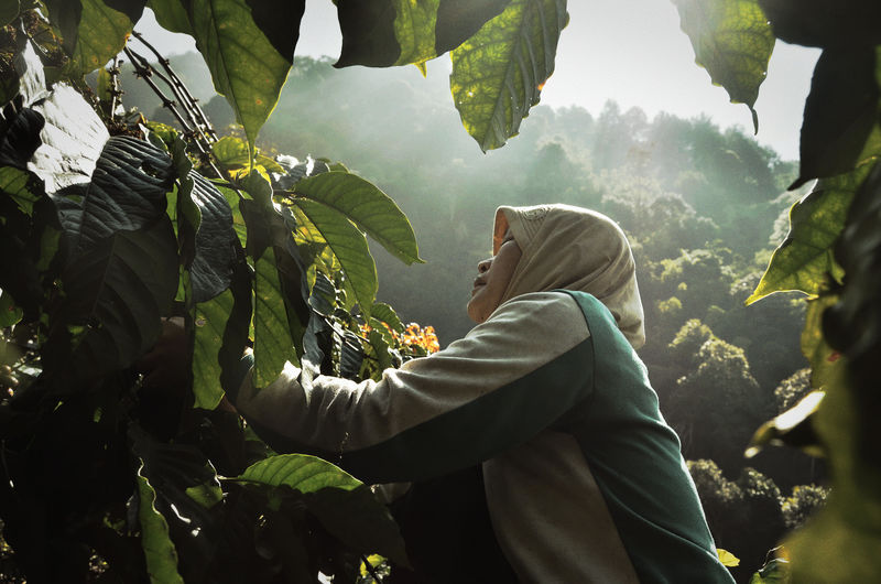 Side view of woman standing amidst trees in forest