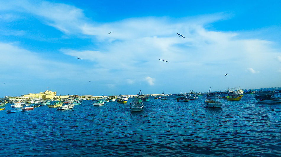 Alexandria Egyptphotography Bahary Beautiful ♥ Beauty In Nature Floating On Water Sea Outdoors WaterfrontEgypt Nature Water Winter Swimming No People Cloud - Sky Sky And Clouds Outdoor Photography MyCity❤️ Castel