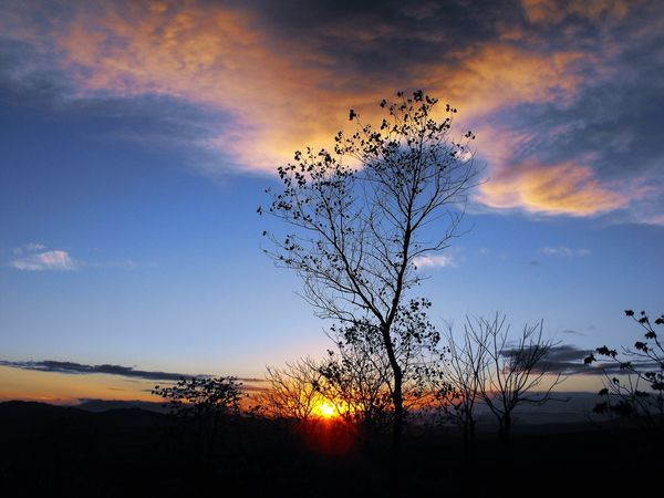 Sky Silhouette Outdoors Beauty In Nature No People Nature Sunrise Blue Sky Clouds Tree Alba Cielo E Nuvole Alberi Natura Nature Photagraphy