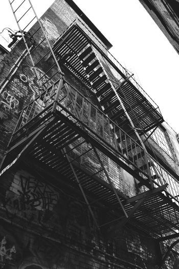 Graffiti Ladder