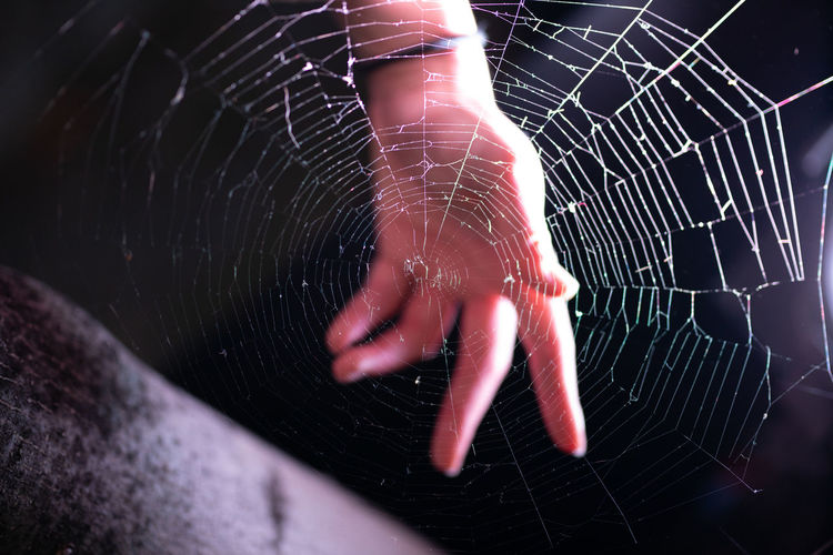 Cropped hand of person by spider web