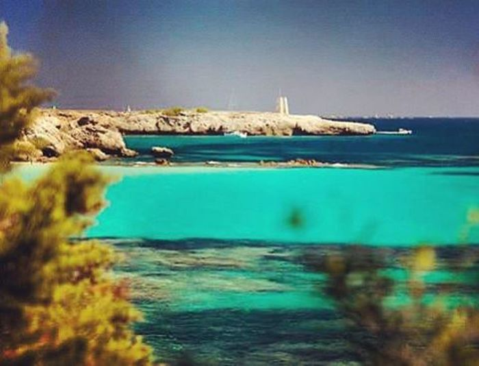 Punta Grand Sperone🌍🌊🌊🌞⛵ MagicMoments Corse Corsica Mare Grandsperone Bonifacio Summertime Summer Holydays Picture Picoftheday Istantlike Ista Istagood Nicepic Niceday Followme Follow Photo Photooftheday Gianlucacericolaphotography