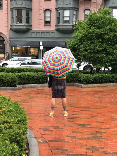 Standing firm Clothing Rainy Days Umbrella Building Exterior Architecture One Person Built Structure Standing Real People Women Leisure Activity Rear View City Lifestyles Casual Clothing Holding Rain Outdoors Umbrella Adult