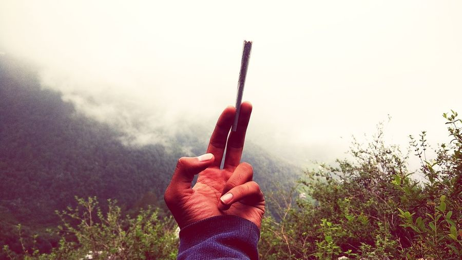 Close-Up Of Hand Holding Marijuana Joint Against Mountains