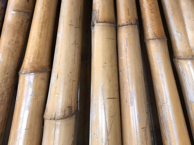 EyeEm Selects Backgrounds Day Pipe - Tube Outdoors No People Full Frame Bamboo - Material