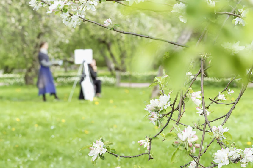 Girl paints draws on canvas of easel in park with blooming sakura. Blurred image for spring creative background Artist Artistic Canvas Creative Space Canvas Art Creative Draw Drawing Flower Flowering Plant Freshness Girl Growth Land Nature Painter Park Picture Plant Sacura Space Spring Springtime Tree Women
