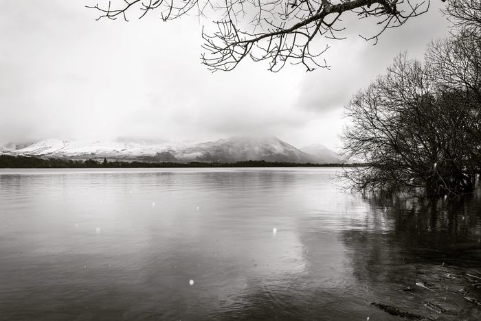 Snowing on the lakes Black And White EyeEm Gallery Lake District Snowing Betterlandscapes EyeEm Best Shots Nature Beauty In Nature Water Lake Tree No People Mountain Scenics Tranquility Bare Tree Sky Wilderness Tranquil Scene Branch Outdoors Fog Scenery Landscape