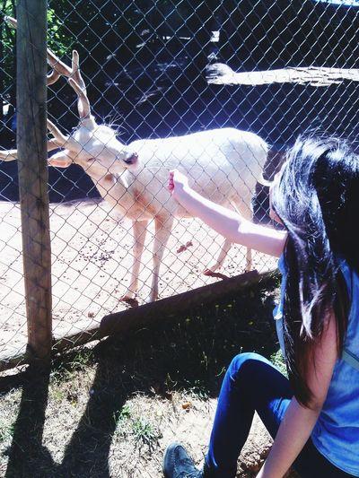 Oww! Hola Qué Tal ehTal L❤ve Zoo Animals  Relax<3 AriZona♡